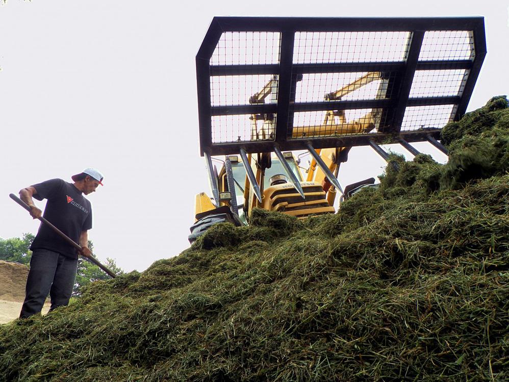Concello de Muras | Axudas por sacrificio de animais e por uso de maquinaria agrícola |