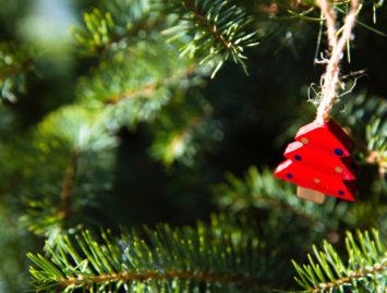 Concello de Muras | Obradoiro de Nadal |