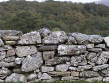 Concello de Muras | 4º Reunión da Rede Galega Agroforestal en Muras |
