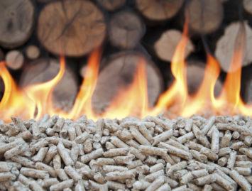 Concello de Muras | Axudas para biomasa (a particulares) |