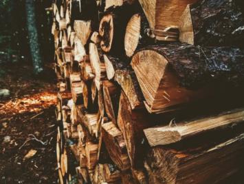 Concello de Muras | Axudas forestais |
