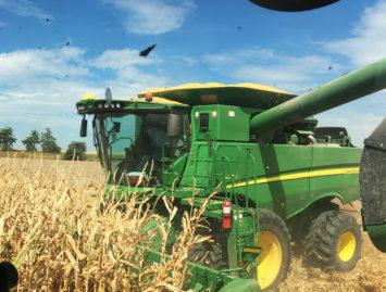 Concello de Muras | PLAN RENOVE maquinaria agrícola 2020 |