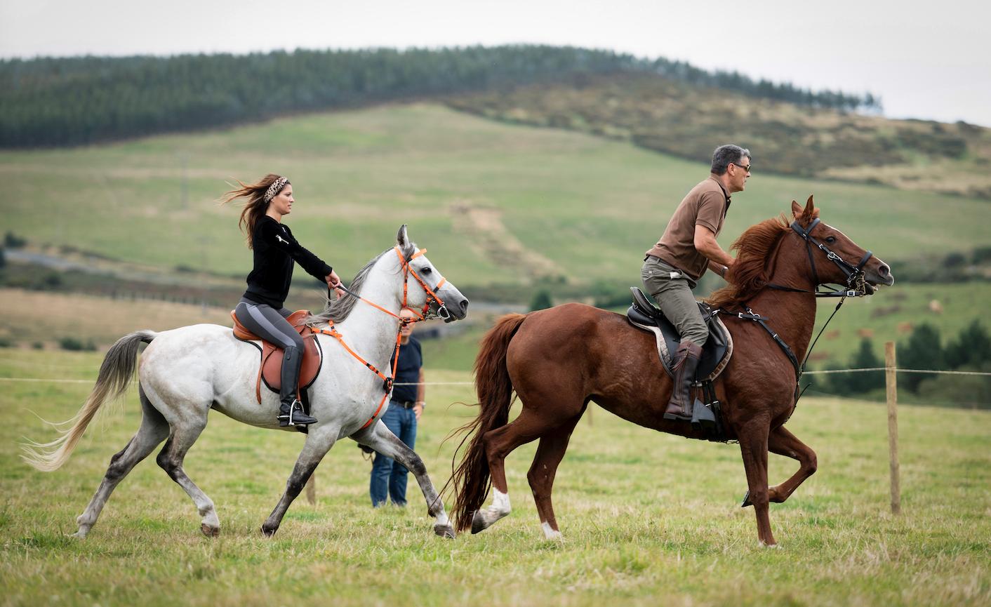 Concello de Muras | Curso inicio mundo dos cabalos |